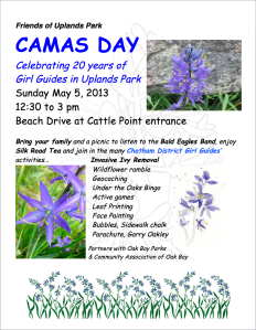 Camas Day Poster May 5 2013 Screen Capture
