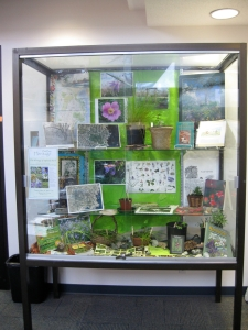 Uplands Park Library Display April 13-2013 IMG_1060