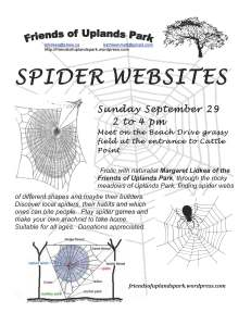2012 Spider Websites poster-1