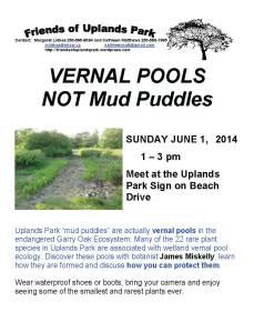 2014 Vernal Pool poster