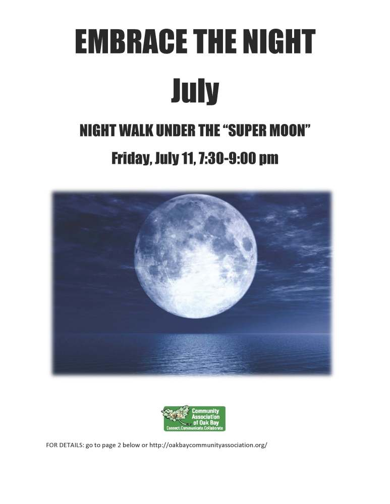 "NIGHT WALK UNDER THE ""SUPER MOON"" - Cattle Point - July 11-2014  (1/2)"
