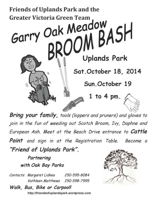 2014 BroomBash & Green Team poster