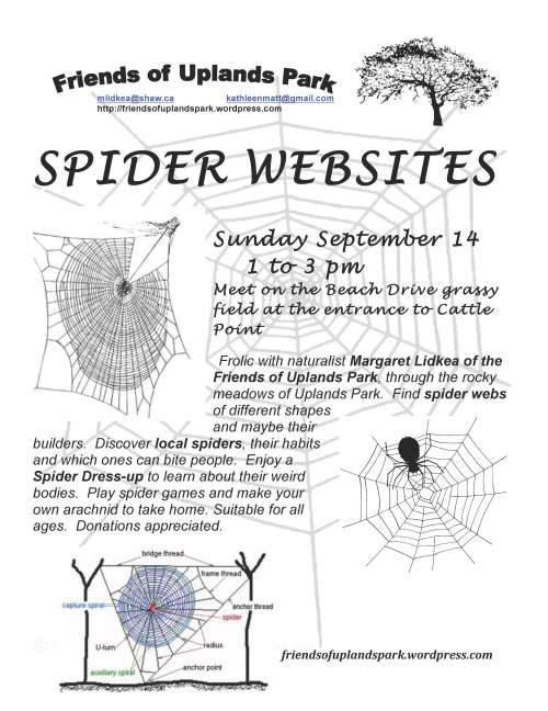 2014 Spider Websites poster