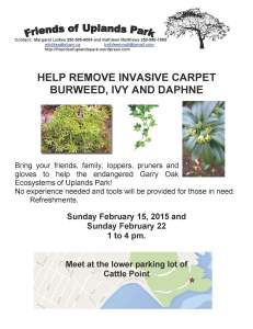 2015 Feb 15, 22 Invasive removal poster