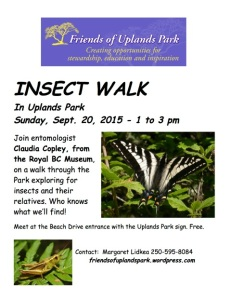 2015 INSECT WALK poster (00000002)