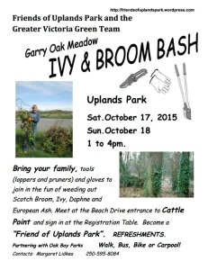 2015 Ivy I& Broom Bash poster